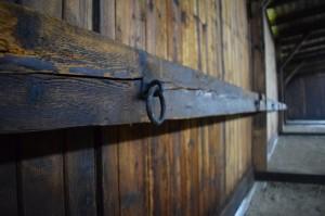 Detalle dentro del barranco en Auschwitz